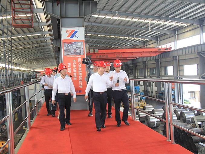 Fan Zhongjie, Deputy Secretary of the Zhaoqing Municipal Party Committee and Mayor, visited Zhaoqing Hongwang for investigation